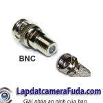 Bo-Jack-BNC-F5